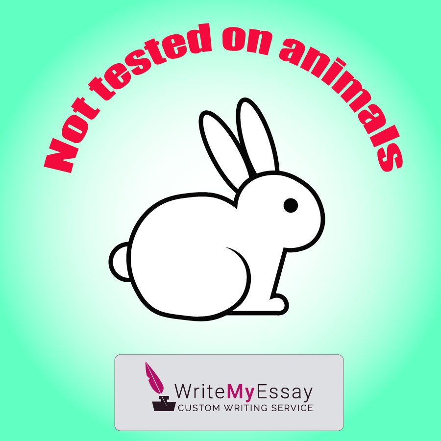 Not tested on animals essay sample