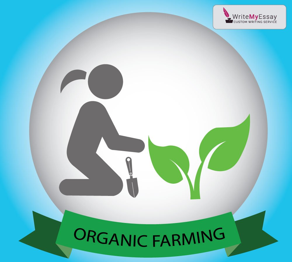 Organic farming essay sample