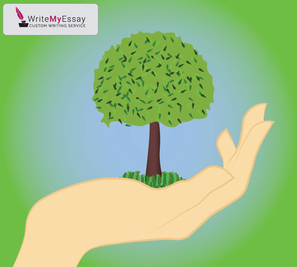 Should corporations be required to engage in responsible citizenship, including environmental accountability? essay sample